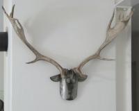 john_deer